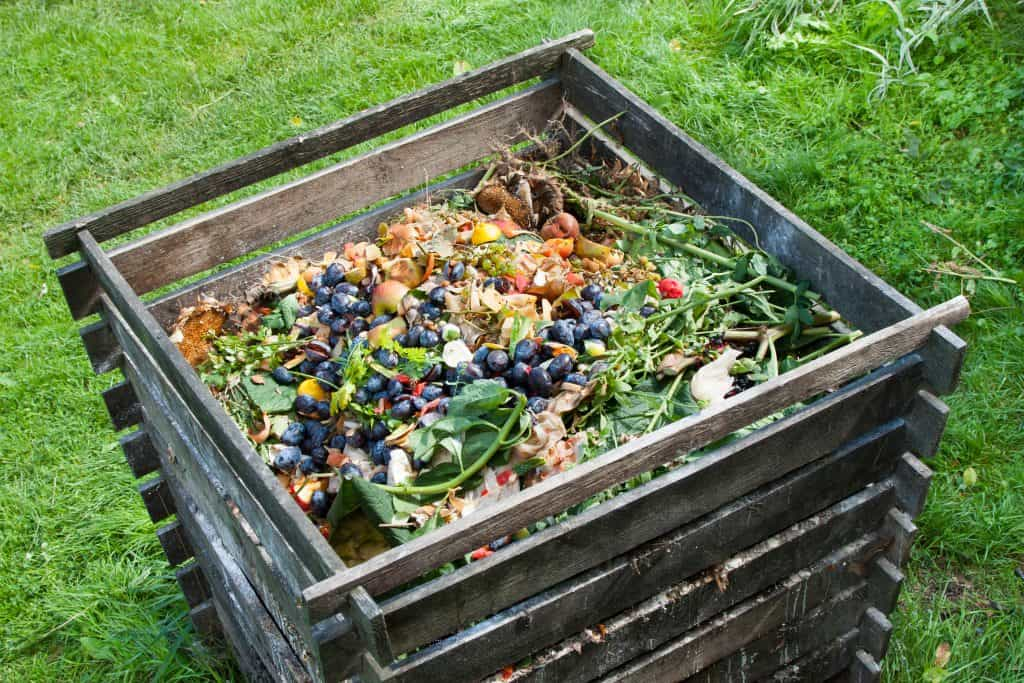 Going Back to Basics: How to Start Your Home Compost - T I P A