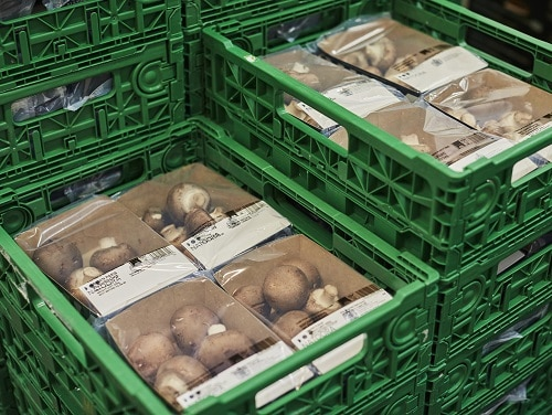 TIPA Packaging wrapping Natoora mushrooms in punnet stacked in crates